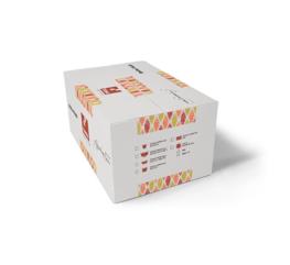 kit-assaggio-caffe-tama-ascoli-piceno